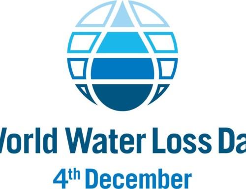 Ziua Mondiala a Pierderilor de Apa